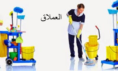 You are currently viewing شركه تنظيف شقق العين